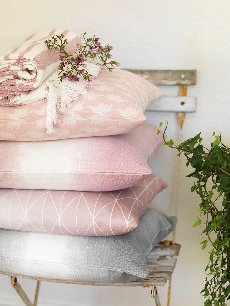 Elephant, Swiss.. rosa kuddar, Moltex