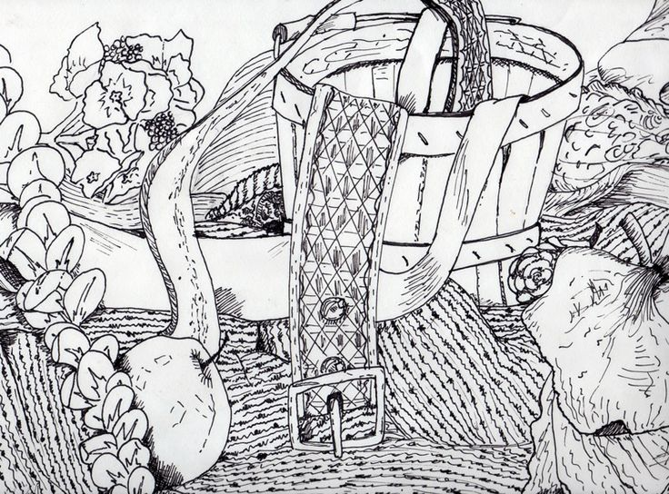 Contour Line Drawing Still Life : Best still life drawing images on pinterest