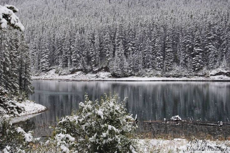 Beautiful September snow fall! Photo by: Elizabeth's Everlasting Photography