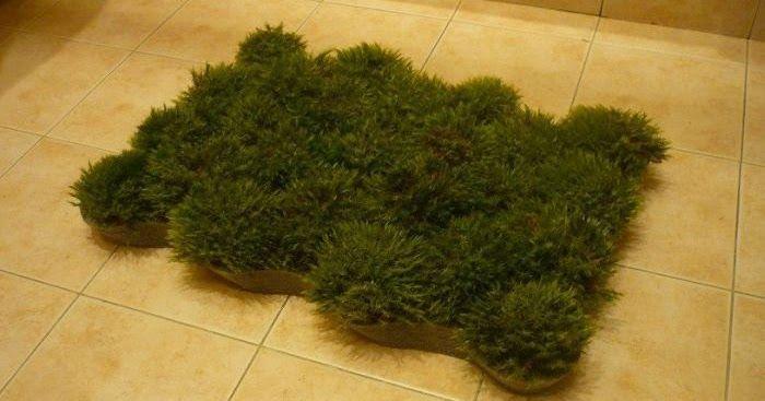 Voici comment fabriquer un tapis de salle de bain en mousse végétale! C'est le printemps sous vos pieds! #diy