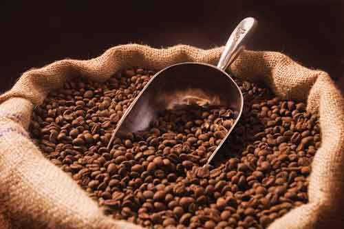 Bengaluru-based-Cothas-Brothers-may-lock-horns in-coffee-market