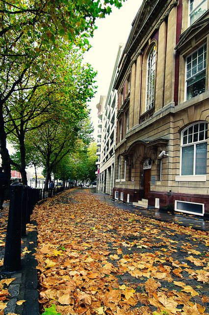 Autumn in Bristol, England by spliter, via Flickr
