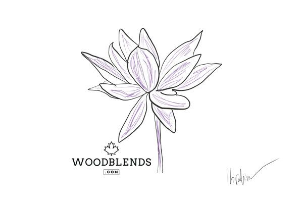 Lotus Drawing Printable (Digital Download) 001 by Woodblends on Etsy