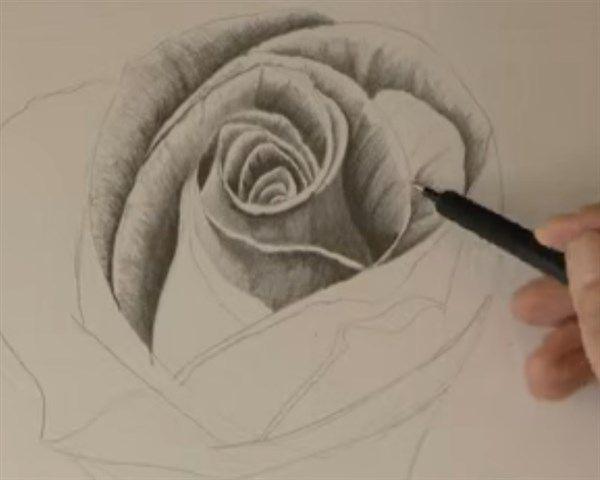 Cómo Dibujar A Lápiz Guía Máxima: Más De 25 Ideas Increíbles Sobre Como Dibujar Rosas En