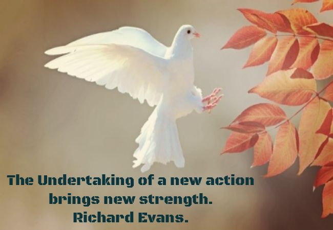 New action - Undertake new actions this is good for you. http://jvz9.com/c/228901/244311