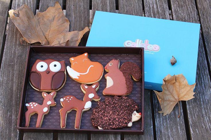 Pack mediano de 15X20 cm galletas de vainilla y mantequilla, decoradas con glasa artesana. El pack contiene seis galletas de otoño de 7,5  cm aprox. un buho, un erizo con virutas de chocolate, una mamá ciervo con su cervatillo, un lindo zorrito y una ardilla. Diseño de Galletea. El  zorrito es diseño de @fiestasmolonas  http://www.galletea.com/galletas-decoradas/otono/init/d/288/