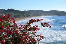 Playa Zipolite - Wikipedia, the free encyclopedia