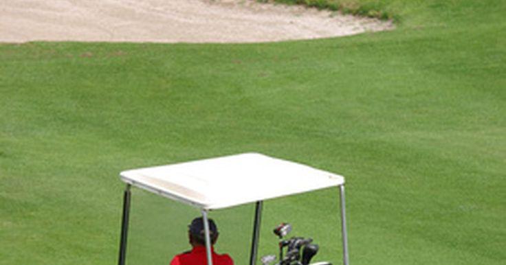 Cómo decidir entre un carrito de golf eléctrico y uno a gasolina. Antes de salir corriendo a tu distribuidor más cercano tienes que decidir qué tipo de carro de golf se adapta mejor a tus necesidades, ¿a gasolina o a electricidad? Al principio puede parecer contradictorio considerar la compra de un carrito de golf a gasolina, ya que la mayoría de los carritos de golf en funcionamiento son eléctricos, por lo que ...