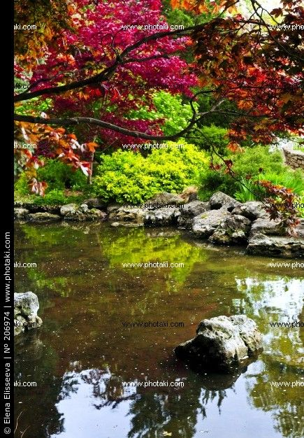 1000 Images About Garden Of Zen On Pinterest