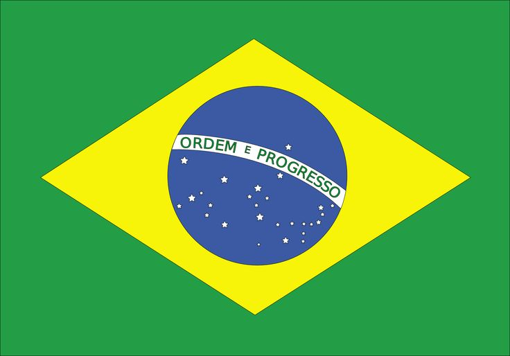 Vlag brazilie Juf Laura