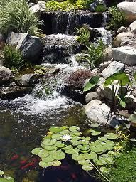 1000 ideas about rock waterfall on pinterest dream for Koi pond builders near me