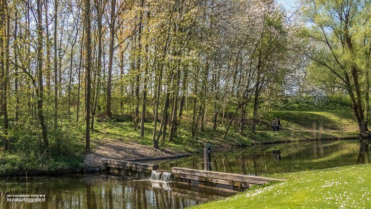 Randpark Beverwaard  Meer foto's (765) van diverse parken in Rotterdam vindt u hier:  http://hs-natuurfotografie.nl/Foto/Parken/index.html  #Randpark #RandparkBeverwaard #Beverwaard #Rotterdam