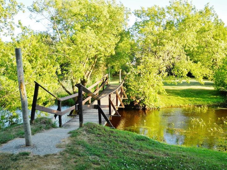 the trail to the wishing well - Winnipeg Beach, Manitoba