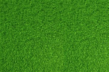 Image result for grass texture for rendering