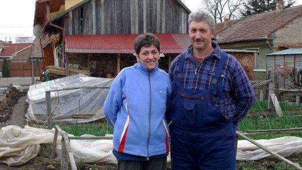 Cutia Taranului - Laszlo si Iutka Gyurka: Cutia cu legume