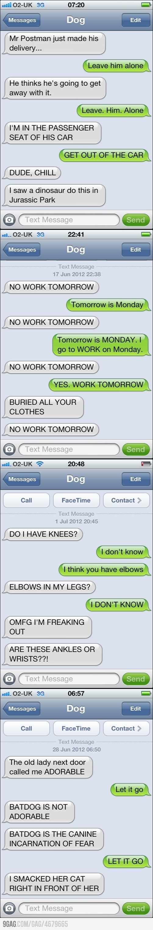 hahaha if dogs could text...Laugh, If Dogs Could Texts, Jurassic Park, Dog Texts, Funny Stuff, Dogs Texts, Hilarious, So Funny, Animal