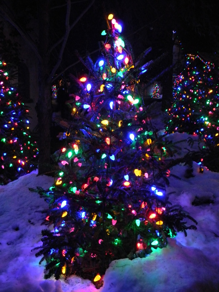 34 Best Christmas Town Busch Gardens Images On Pinterest Christmas Town Yankee Candles And