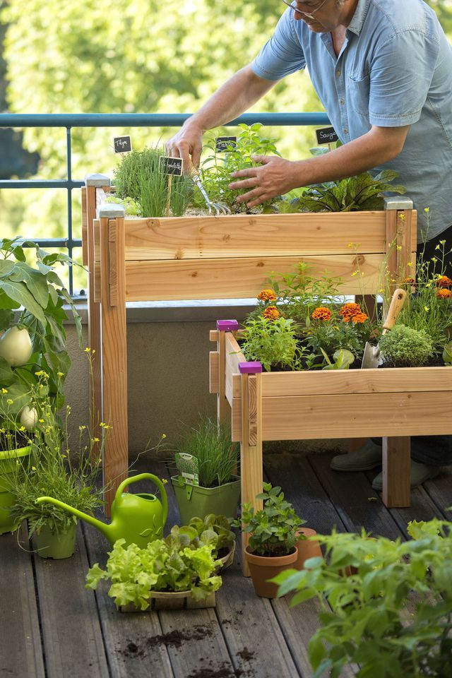Les 58 meilleures images du tableau jardinage et entretien for Entretien jardin le quesnoy
