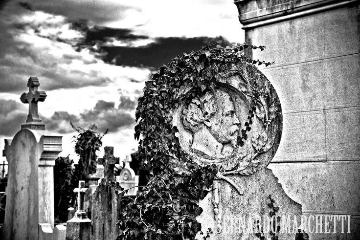 https://flic.kr/p/BdWRRZ | only lyon XL - we rise in the dying | tracina.tumblr.com/ www.facebook.com/BernardoMarchetti.Photographer