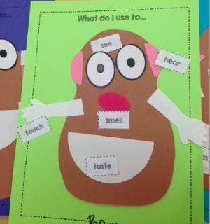 Preschool Wonders: 5 {Senses} for Friday! FREE