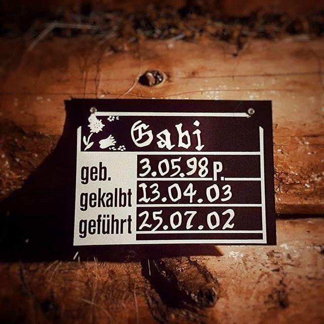 Neulich im #Stall . . #gabi #kuh #alp #bergbeizli #oberberg #parpan #inlovewithswitzerland #holz #milchwirtschaft