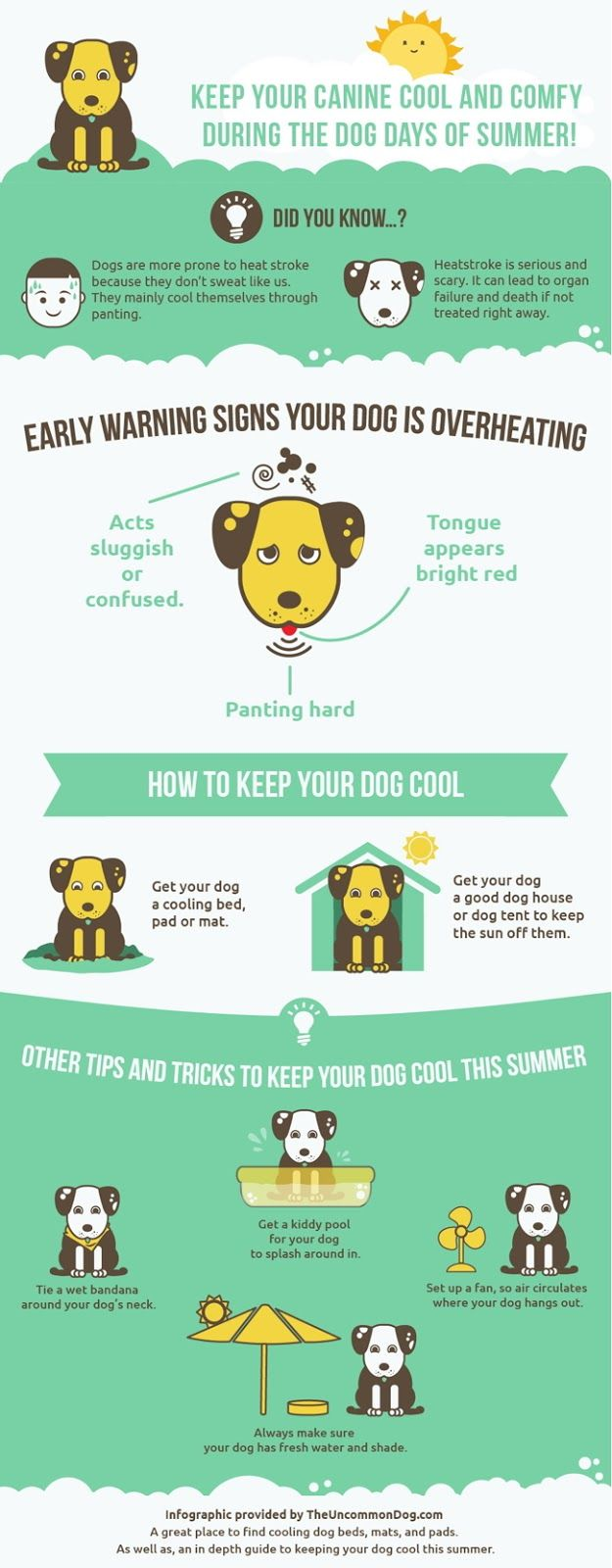 This #infographic provides tips on how to keep your #dog cool this #summer.