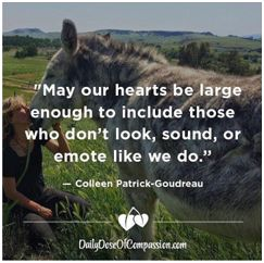 Regram @my_vegan_dreams . May our hearts be large enough to include those who don't look, sound, or emote like we do. ❤❤❤❤❤
