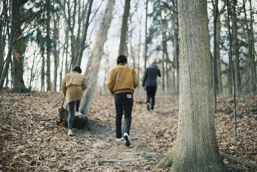 Lily, Remus, Sirius & James on a walk in the Forbidden Forest || 1975 || taken by Sirius black