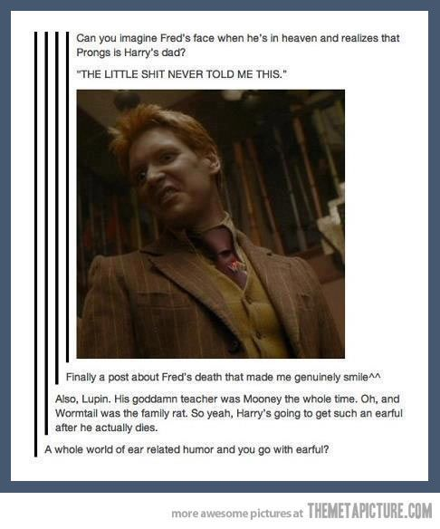 fred and george weasley funny quotes | harry potter funny fred and george marauders map