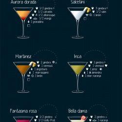 20 Cócteles con Ginebra | Visual.ly