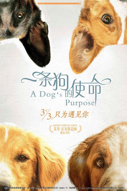 A Dog's Purpose (2017) Full Movie Streaming HD