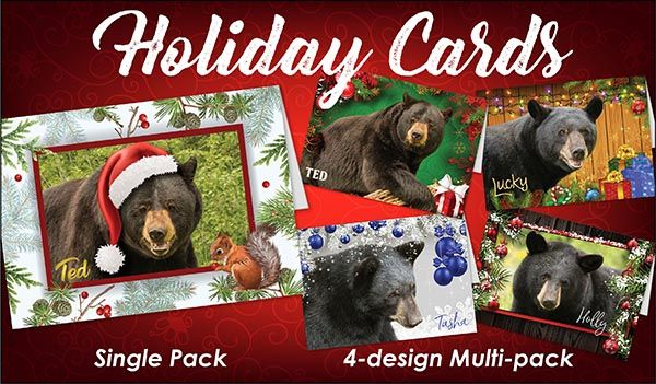 2017 Holiday Cards  Go to bear.org  North American Bear Center!