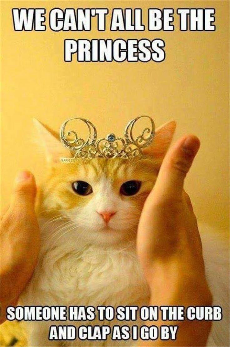 "#Princess  #Tiaras  #GirlBoss ""Somebody's got to do it!"""