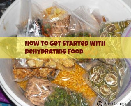 How to get started dehydrating food: equipment, preparation, what you can dehydrate, rehydration. | Premeditated Leftovers