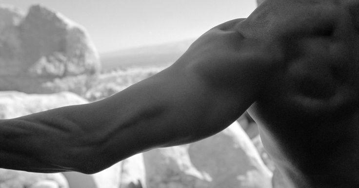 Diferenças entre elevação lateral e remada alta. Uma parte superior do corpo fortalecida é importante tanto para os esportes como para as funções diárias. O fortalecimento dos músculos da parte superior do corpo requer um esforço dedicado e uma rotina de exercícios constante. As remadas altas e elevações laterais são dois exercícios comumente realizados em um treino para o ombro. Além do fato de ...