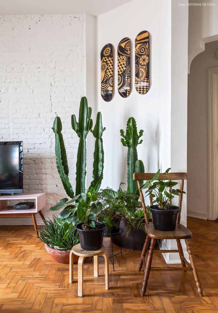 jardim de apartamento feito com cactos de diferentes tamanhos e espécies que se dão bem em ambientes internos