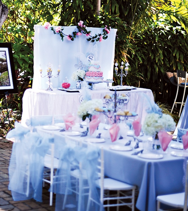 Wedding Party Ideas: Cinderella Theme Party. Would Be A Pretty Bridal Shower