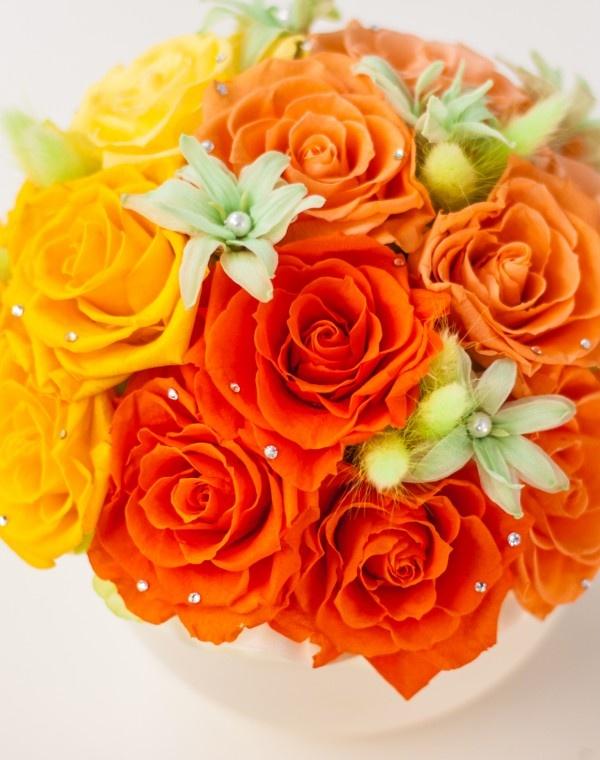 preserved flower IMG_6951