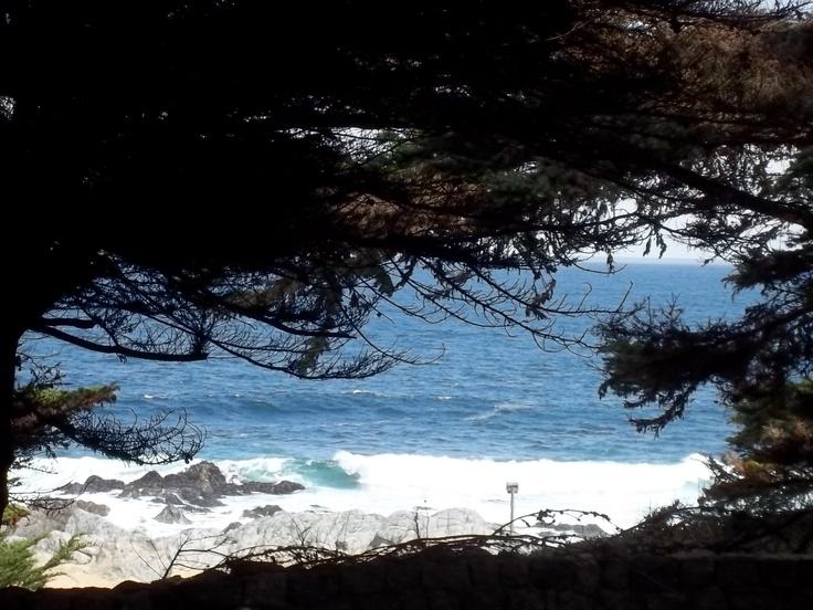Isla Negra - Chile
