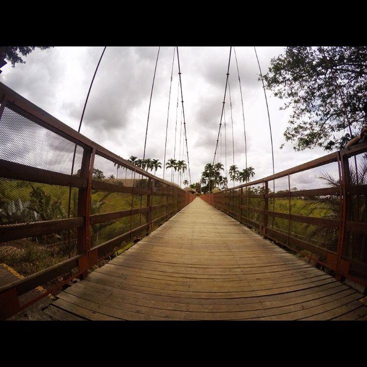 #GoPro #GoPro_Photo #VidaSabatica #Panaca #Colombia