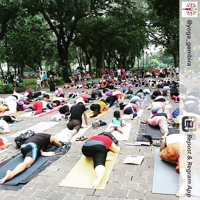 Repost from @yoga_gembira  3 hari menuju #YoGFest 2016. Semangat untuk tumbuh bersama. #growingtogether  #yoga #yogagirl #yogalife #yogalove #YoGFest2016 #yogaeverydamnday #yogaindonesia #yogaeverywhere #yogapose #yogainspiration #namaste #jakarta #indonesia