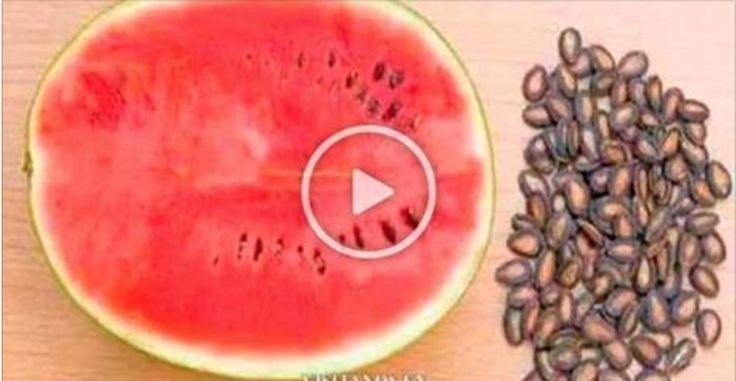 A melancia é uma das frutas mais refrescantes e saborosas do mundo.Por isso, ela está presente na cozinha de muitas famílias.Infelizmente, as pessoas tendem a jogar as sementes fora, por falta de conhecimento.