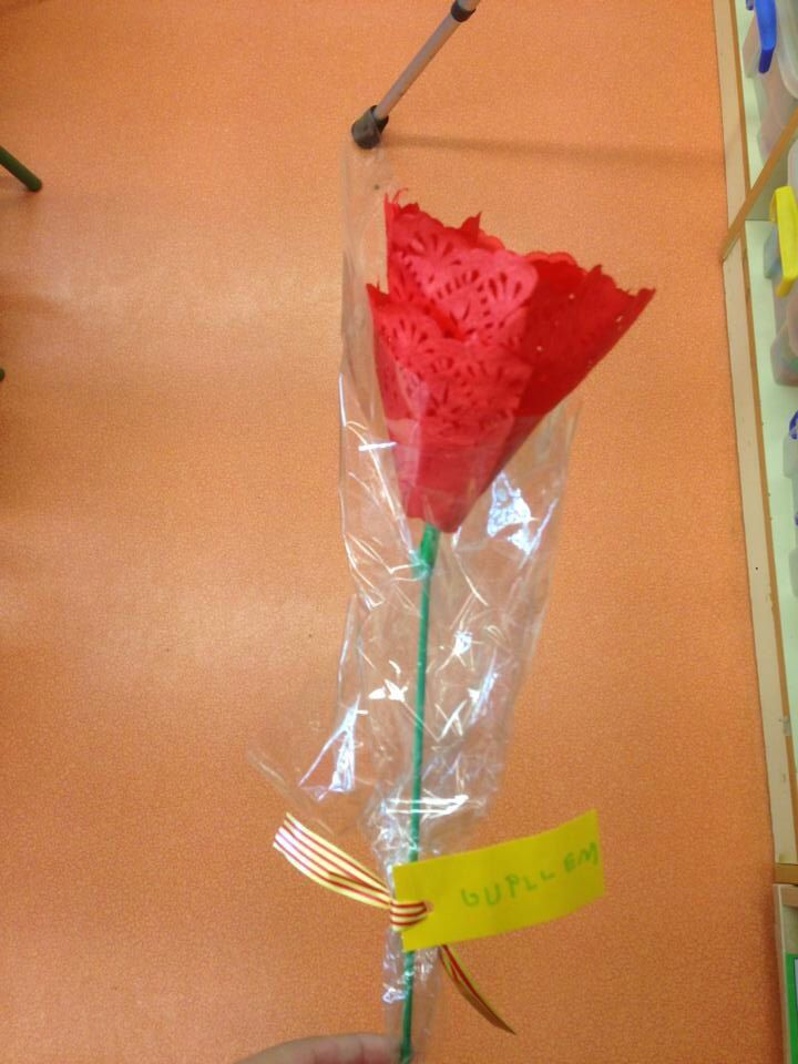 Rosa de Sant Jordi P4.