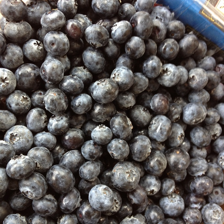 Blueberries!: Things, Blueberries