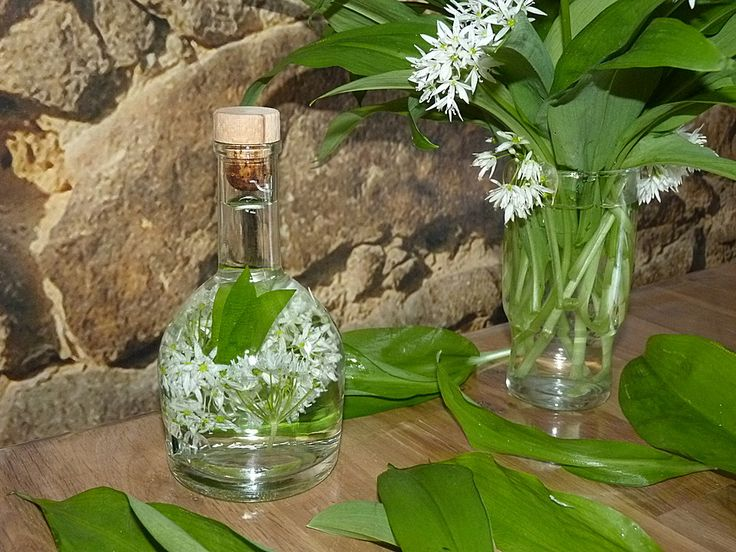 Bärlauchblüten - Essig, ein leckeres Rezept aus der Kategorie Deutschland. Bewertungen: 17. Durchschnitt: Ø 4,2.