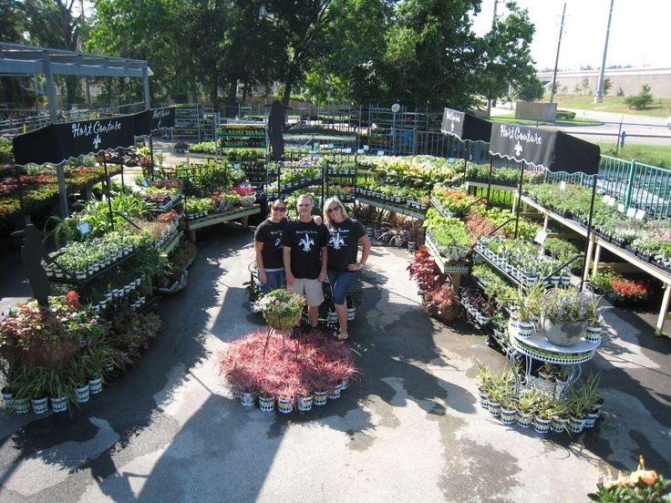 42 Best Images About HC Retailers On Pinterest | Gardens Seasons And Garden Supplies