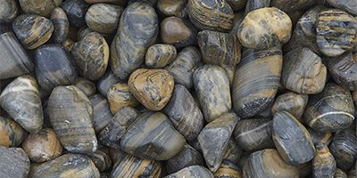 Polished Tiger Striped #StonePebbles