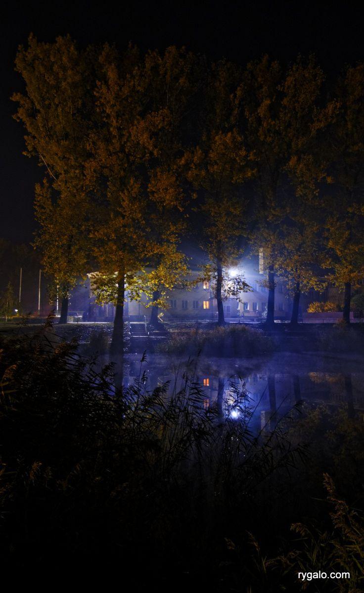 nocna mgła