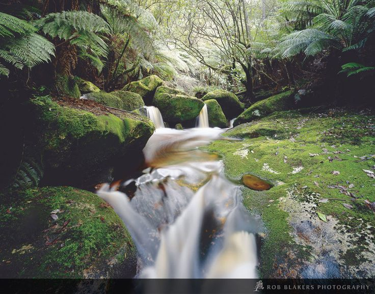 The Groom River, Blue Tier, north-east Tasmania by Rob Blakers Photography