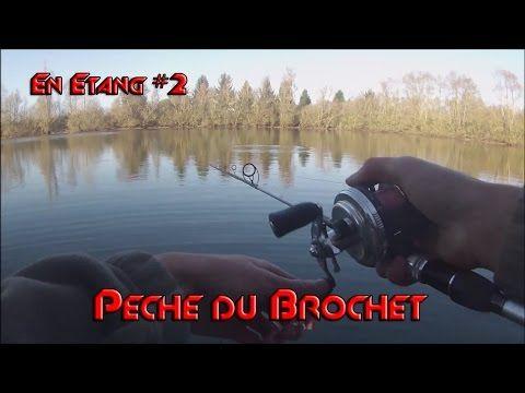 Pêche du brochet aux leurres en étang #2